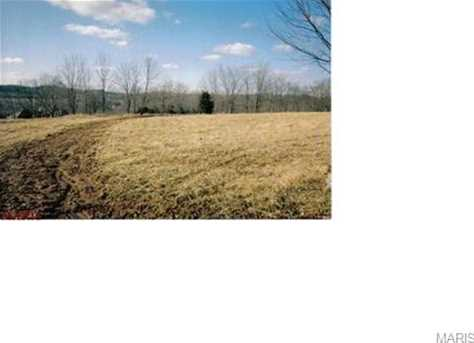 8497 Old Lemay Ferry Road - Photo 5