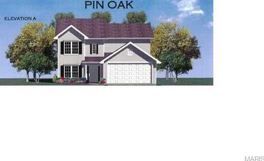 Tbb Lot 221 Amberleigh Woods-Pin Oak - Photo 1