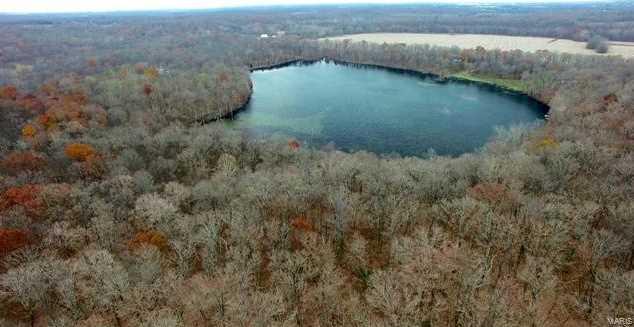 125 Pond Bottom - Photo 7