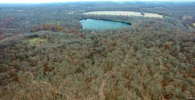 125 Pond Bottom - Photo 9