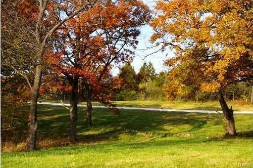 105 Benton Grove Court - Photo 3