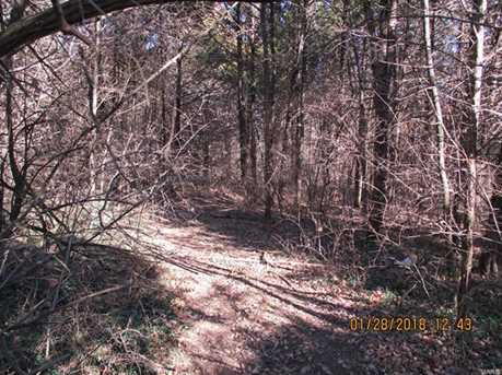 17 +/- Acre Chilton Hills Drive - Photo 17