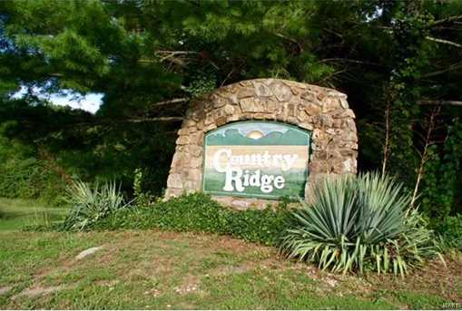 9729 Country Ridge Lane - Photo 17