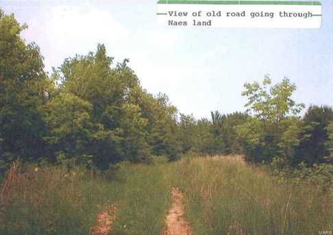 32+/-Ac Wolf Hollow Road - Photo 7