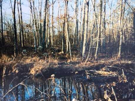 0 Buck Mountain Rd - Photo 11