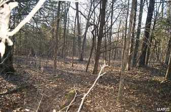 4077 Saddle Wood Rd - Photo 3