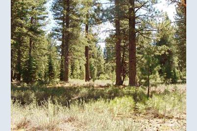 10470 Pine Cone Drive - Photo 1
