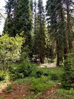 14225 Herringbone Way - Photo 3