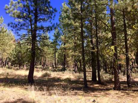 295 Deer Trail - Photo 3