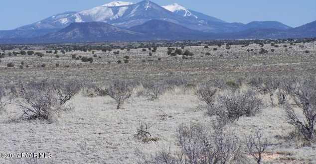 6687 Prairie Grass Ln - Photo 1