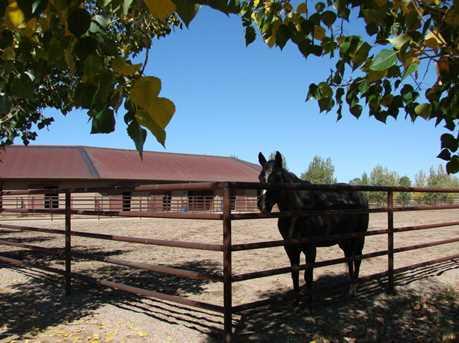 9285 American Ranch Road - Photo 29