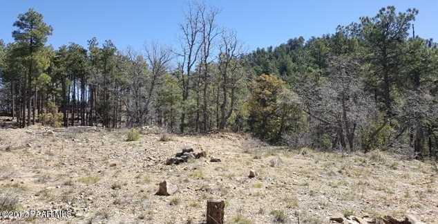 0 Tall Pine Trail - Photo 5