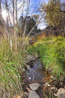 3180 Pine Lakes - Photo 9