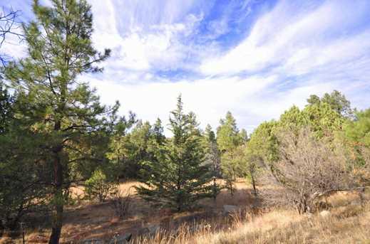 3180 Pine Lakes - Photo 21