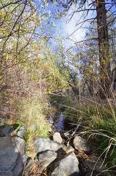 3180 Pine Lakes - Photo 8