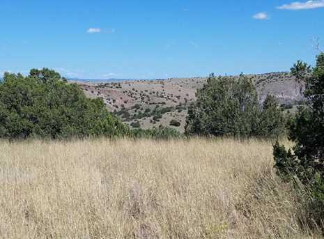 1401 Reata Trail - Photo 7