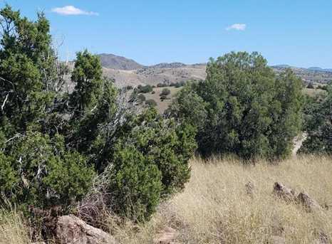 1401 Reata Trail - Photo 3