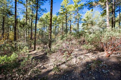1455 High Valley Ranch Road - Photo 1
