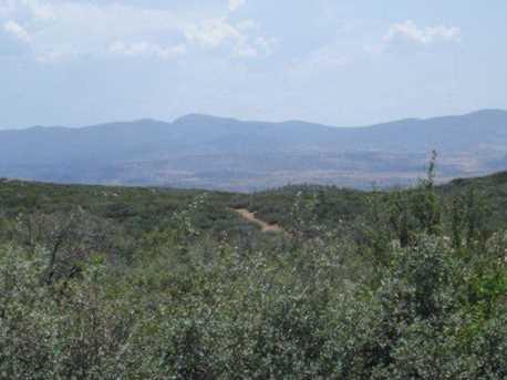 61 Sheridan View Way - Photo 15