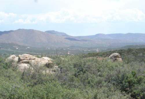 61 Sheridan View Way - Photo 3