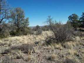 0 Hidden Canyon Rd - Photo 3