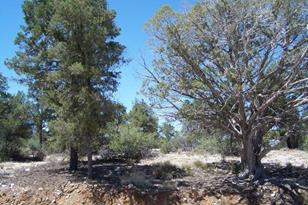 6735 Almosta Ranch Road - Photo 1