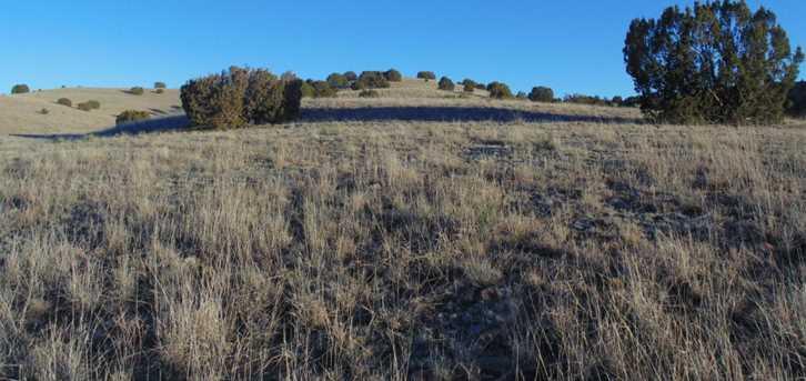 431 Sierra Verde Ranch - Photo 7