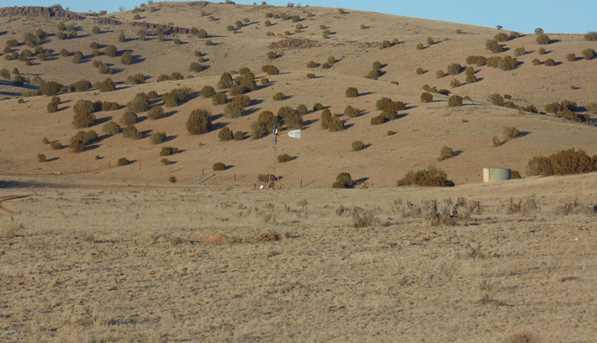 431 Sierra Verde Ranch - Photo 1