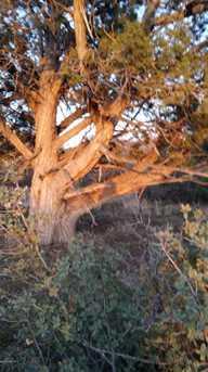 14640 Agave Meadow Way - Photo 17