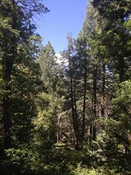 0 Pristine Pines - Photo 3