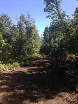 0 Pristine Pines - Photo 9