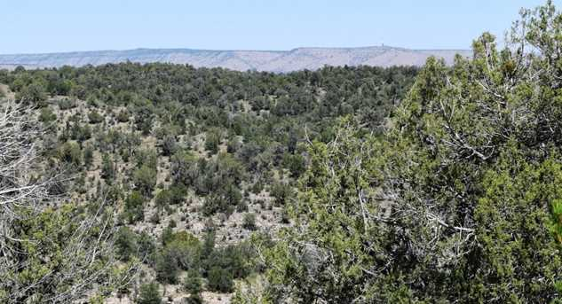 264 Sierra Verde Ranch - Photo 5