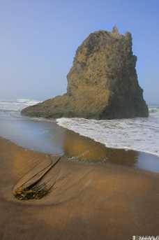 43701 Sea Cypress Dr - Photo 3