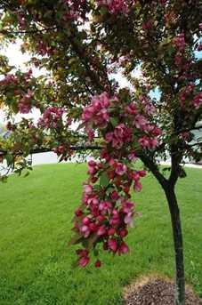 Hidden Blossom Ln #new - Photo 21