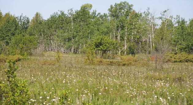 8805 W Meadow Rd - Photo 5