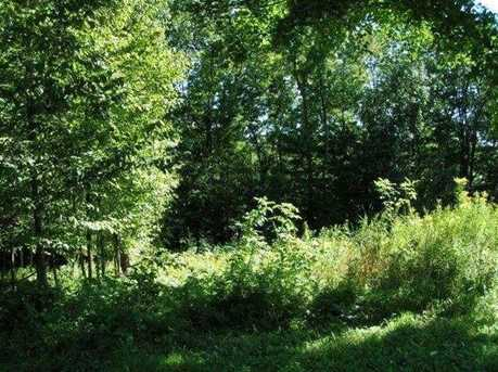 6.3 Acres Forest Valley Road - Photo 3