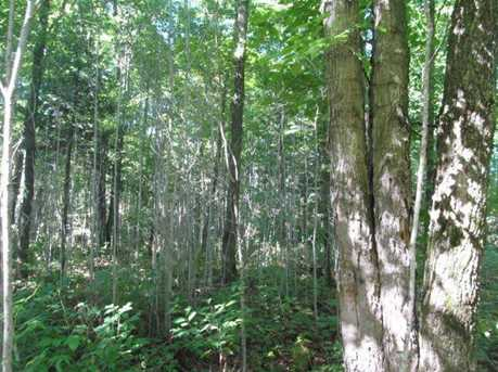 123 Acres Off County Road Dd - Photo 3