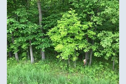 Lot 4 County Road V - Photo 1
