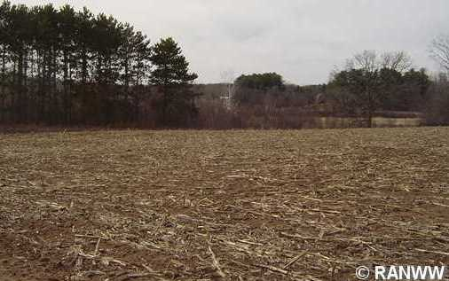 698 Hwy Ss - Photo 5