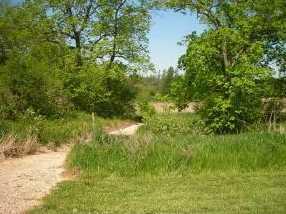 Hickory Twin Ln - Photo 3