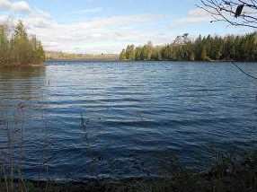 Bear Lake Rd - Photo 1