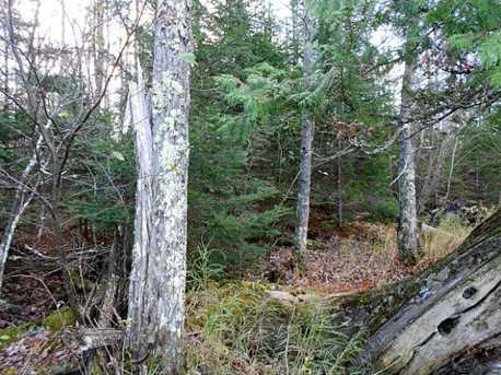 Bear Lake Rd - Photo 5