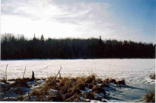 14463 Angel Crest Lake - Photo 6