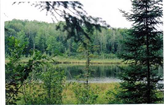 14463 Angel Crest Lake - Photo 1