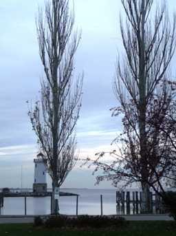 290 E Harbor View Drive - Photo 27