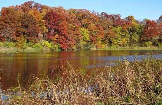 L23 Autumn Pond Trail - Photo 11