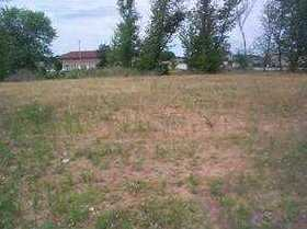 4 Lots Hodgsons Prairie - Photo 7