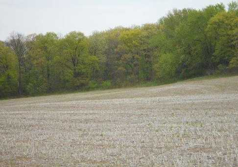 122.37 Ac County Road Cm - Photo 3
