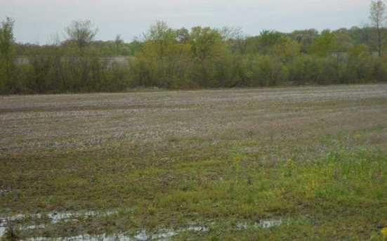 122.37 Ac County Road Cm - Photo 7