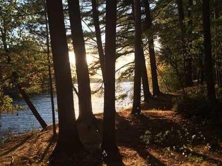 L93 East Shore Trail - Photo 5